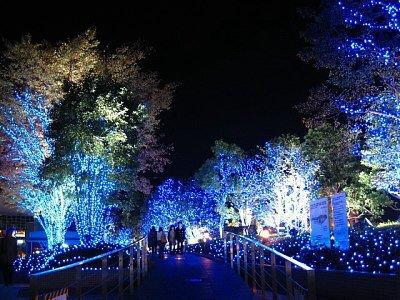 detail 8cc8d8190ab2af84ddb35b3b541083e71 - Christmas In Japan