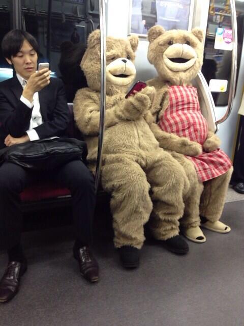 bears on train